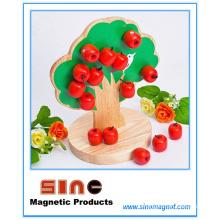 Magnetisches hölzernes Apfelbaum-Spielzeug / pädagogisches Spielzeug
