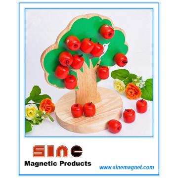 Brinquedo magnético da árvore de Apple de madeira / brinquedo educacional