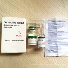 Ramadan Kareem GMP 0.25g / 1.0g Ceftriaxone pour injection Ceftriaxone Injectable