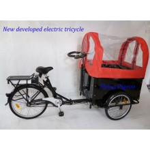 Big Load Capacity Electric Rickshaw Tricycle (FP-ERT003)