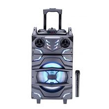 12 inch Trolley Speaker With Bluetooth