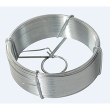 Competitive Price for Iron Wires Mesh 12 BWG Galvanized Wire export to Poland Manufacturers