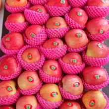 Fresh Huaguan Apple de melhor qualidade