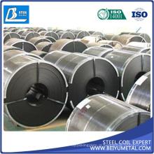 Fornecedor dourado de aço laminado a alta temperatura de SAE1010 Ss400 Q235B HRC Hrp