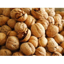 Usine chinoise en peau moulue commune noix de coquille, noix commune brute