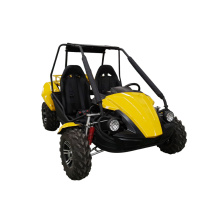 2 seats automatic dune buggy with metal roof