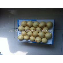 Высококачественная свежая груша Ya из грушевой фабрики