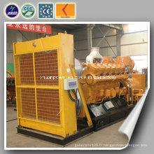 Centrale électrique homologuée CE Générateur de gaz au four à coca