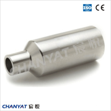 A312 (TP347, TP310H, TP347H) Stainless Steel Con. /Ecc. Pipe Straight Nipple