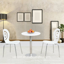 Modern Design Leisure Garden Hotel Table and Chair Set (SP-CT619)