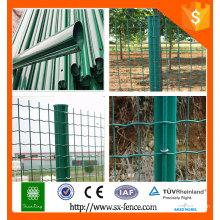Clôture de clôture euro / clôture de Hollande / clôture en treillis soudé