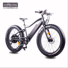 Fat Tire Electric Bicycle cheap 48v500w e bike made in china Hot selling