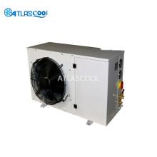 Paseo al aire libre en la unidad de condensación y evaporador del refrigerador