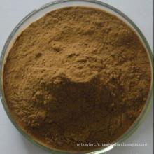 Extrait d'herbes de Brahmi / poudre d'extrait de Bacopa Monniera
