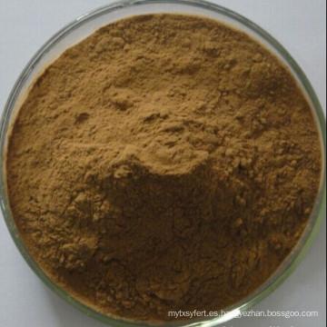 Extracto de Hierbas Brahmi / Polvo de Extracto de Bacopa Monniera