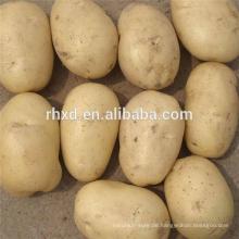 Verkaufe Kartoffeln im niedrigen Preis