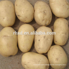 Sell potatoes in low price