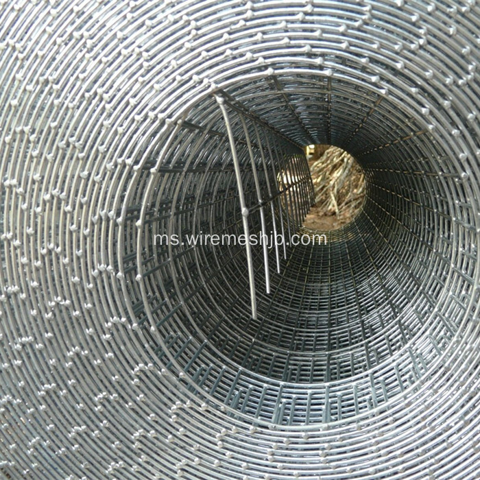 1''X 1 '' Galvanized Welded Wire Mesh Rolls