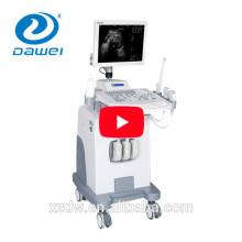 Ultraschallgerät Preis & Trolly B-Modus B / W medizinischer Ultraschall