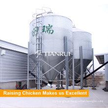 Porto de agricultura projetado silo de alimentação de frango de aves de capoeira para equipamentos de aves de capoeira