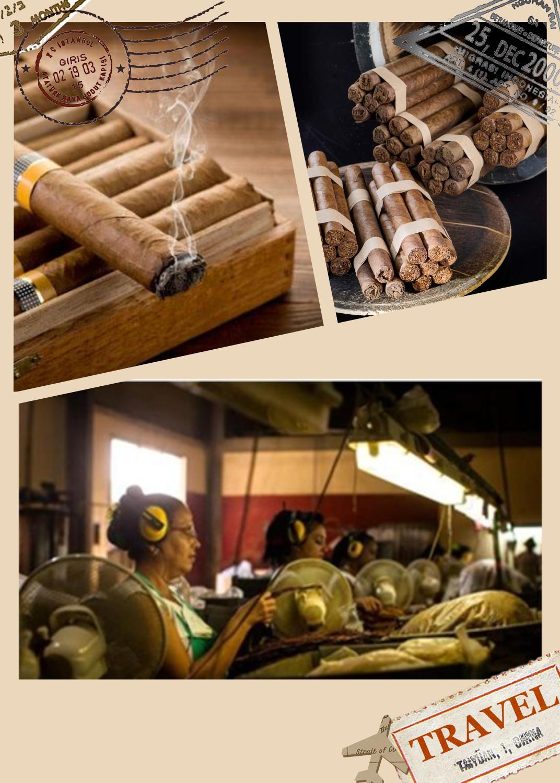 Tobacco Grade CMC--02