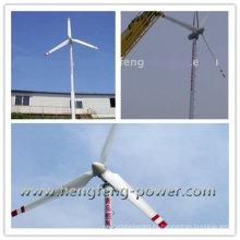 Nuevo modelo residencial y las granjas del viento generador 10KW
