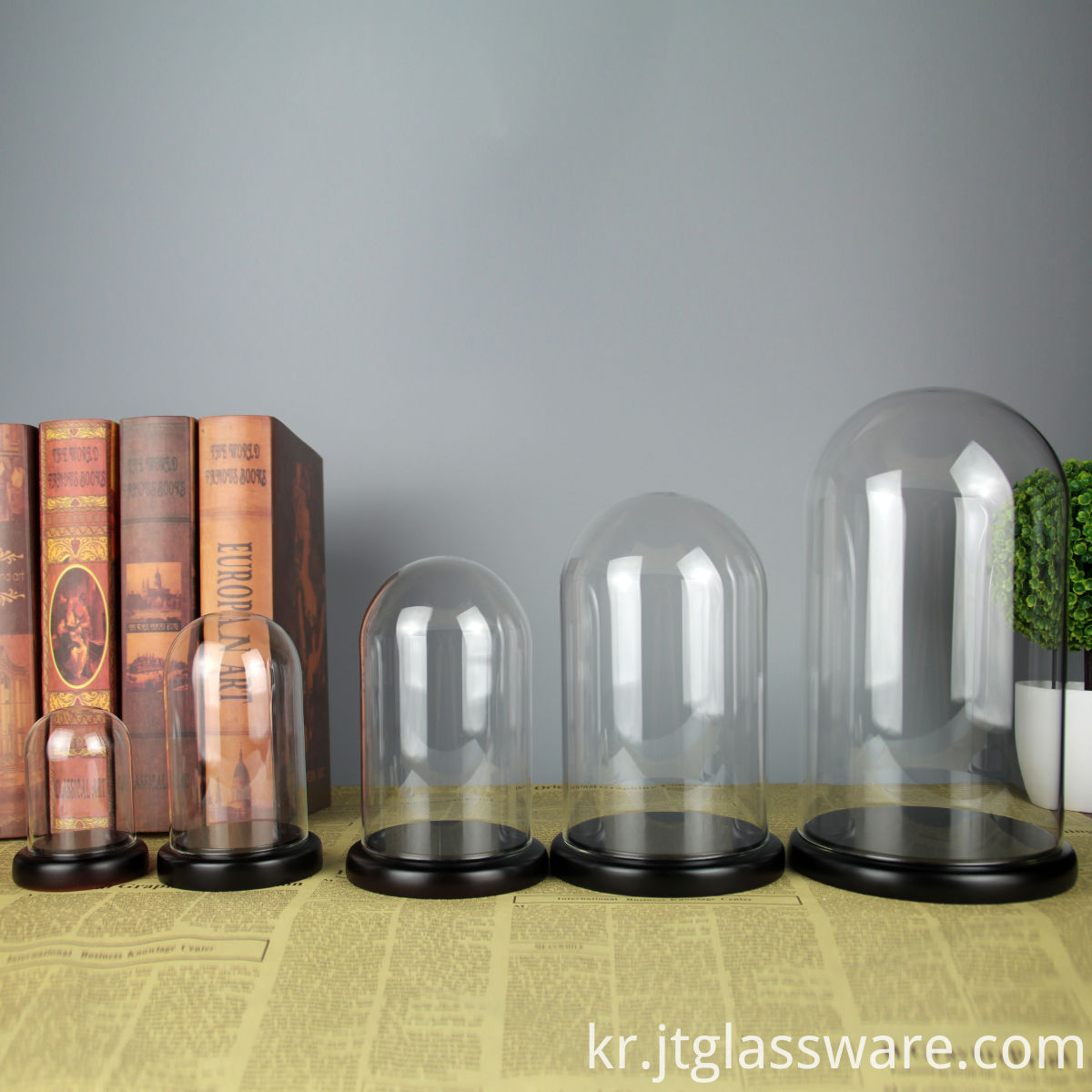 Borosilicate Glass Cloches with Bamboo Base