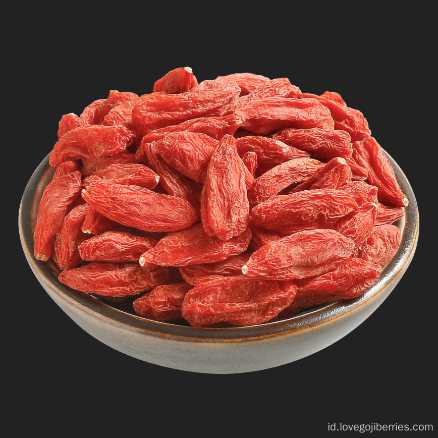 Grosir massal Goji Berries