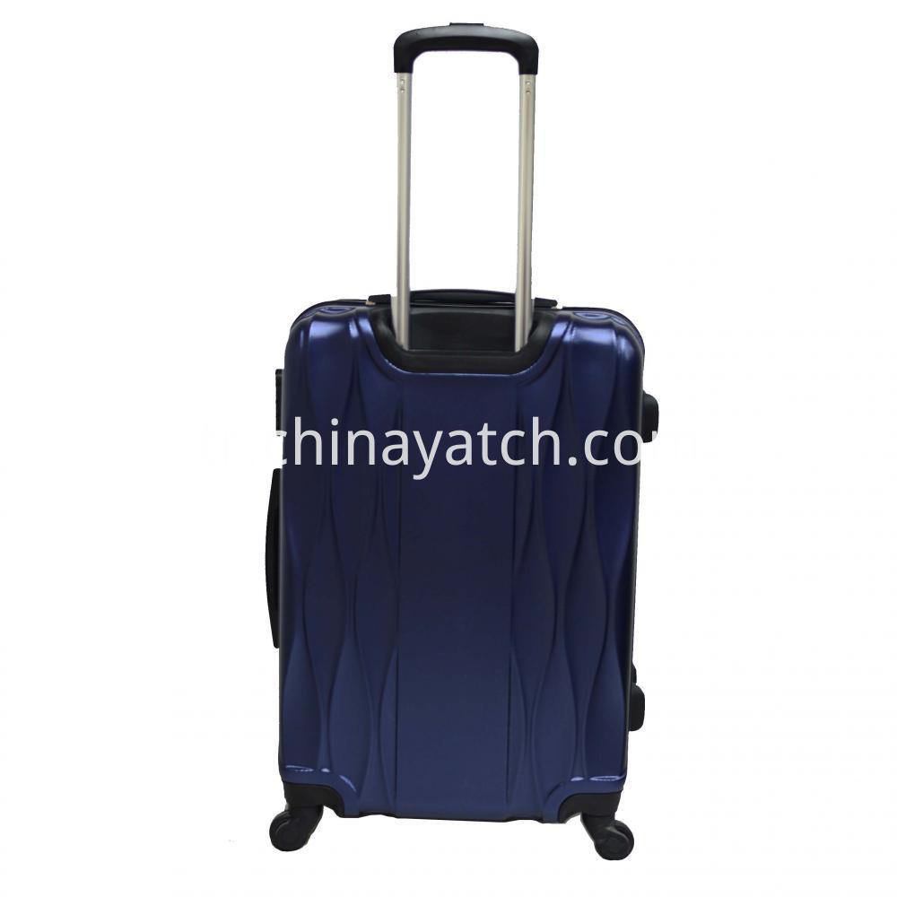 Glossy Pet Luggage Set