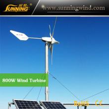 Outdoor Free Energy Generator Magnet Wind Generator (MAX 800W)