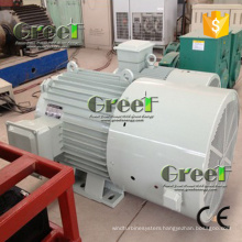 260rpm Permanent Magnet Generator for Wind and Hydro Turbine