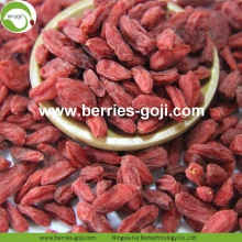 Factory Supply Fruit Natural te koop Goji-bessen