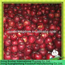 Huaniu Apfel niedrigen Preis
