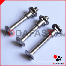 Quality Antitheft Bolt (Screw) with Nut