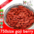 ORGANIC FRESH 100% NATURAL GOJI BERRY