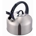 Tetera grande de acero inoxidable con caldera de agua de 3 cuartos