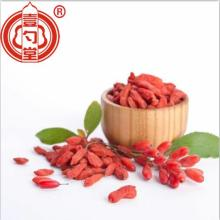 De Superfood Goji-bessen Gedroogd fruit