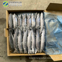 Frozen Pacific Saury Taiwan Seafood Companies 120-150g On Sale