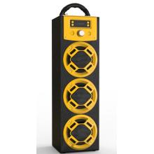 Private Mould Bluetooth Koraoke Speaker