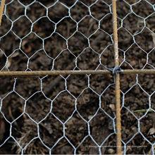 Günstige Electro Galvanized Chicken Netting