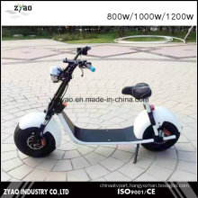 Newest 1000W/1500W Big Wheel Citycoco Electric Scooter for Adults 2 Wheels