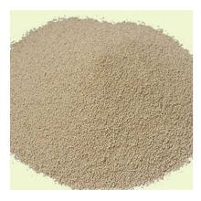 Nouveau produit Lysine for Feed