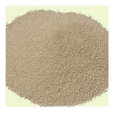 New Product Lysine for Feed