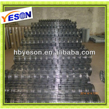 2x2 Galvanized Welded Wire Mesh china suplier/alibaba express