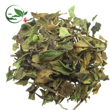 Fresh Organic Chinese Pai Mu Tan White Tea
