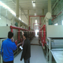 Professional fruit dryer Mesh-Belt drying machine