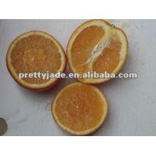 Sweet Navel Orange supplier