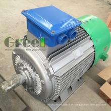 Generador de imanes permanentes de baja potencia Rpm Big Power en venta