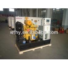 Tipo abierto Weifang 25kva generador diesel 50HZ