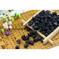 Nêspera Black Wolfberrry Fruit Atacado
